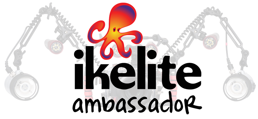 Jacques de Vos is a Ikelite Ambassador