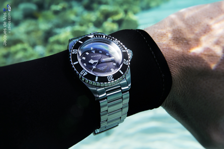 The black version of the Borealis Seahawk 1500 worn underwater.