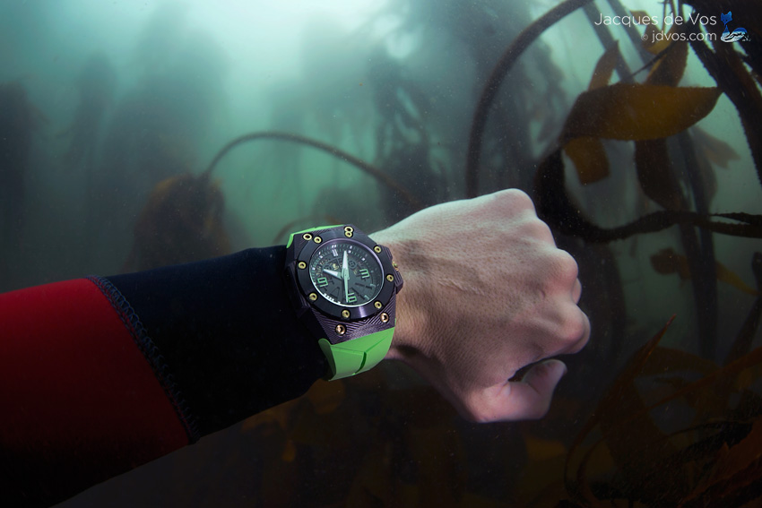 Diving With The Linde Werdelin Oktopus Double Date Carbon In False Bay, South Africa